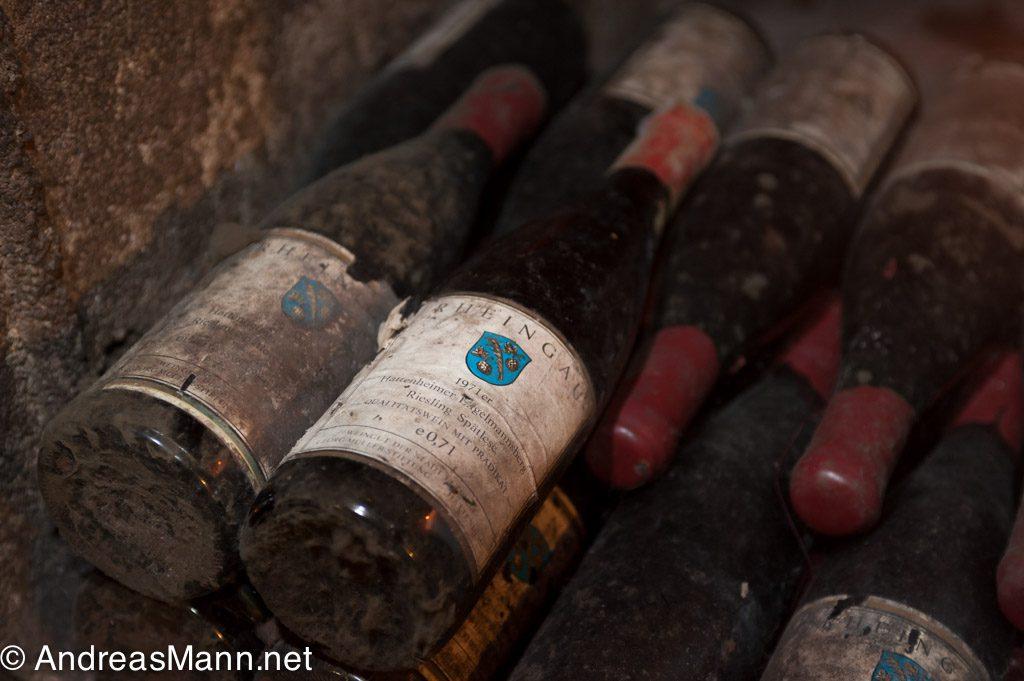 Alte Weinflaschen im historischen Weinkeller des Weingutes Georg-Müller-Stiftung.